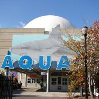 Adventure Aquarium, Camden, NJ, Камден