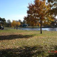 clifton memorial park, Клифтон