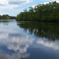 Lake Shenandoah, Лейквуд