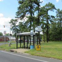 Bus Shelter, Лейквуд