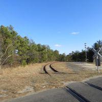 RR Tracks, Лейкхарст