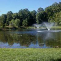 Small pond, Ливингстон