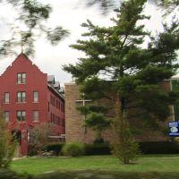 Felician College, Лоди