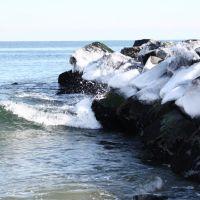 Wave, Лонг-Бранч