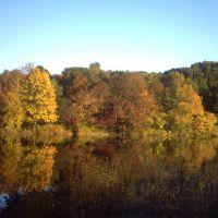 Fall, Морристаун
