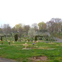 Glendale Cemetery, Натли