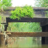 Wooden Bridge over Bellmans Creek, New Jersey Meadowlands, Норт-Берген