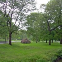 Cedar Brook Park, Плайнфилд