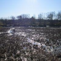 Riverton Mud Area, Ривертон