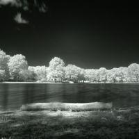 Ridgewood Duck Pond, Риджвуд