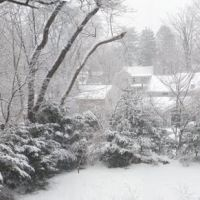 Winter Wonderland, Риджвуд
