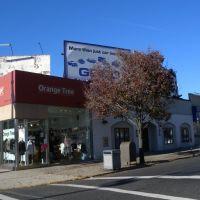 Orange Tree, Риджефилд