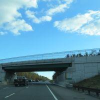 Garden State Parkway, Саут-Томс-Ривер