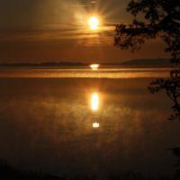 Misty Dawn, Силвертон