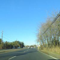 Hooper Avenue, Силвертон