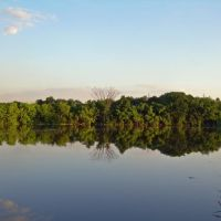 Hackensack River Park, Тинек