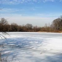 Frozen Indian Pond, Тинек
