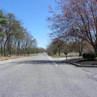 Washington Ave, Томс-Ривер