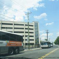 NJ TRANSIT BUSES, Трентон