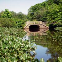 Newton Lake Park, NJ  (10), Хаддон