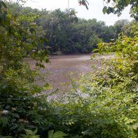 Cooper River Below Grove St, Хаддон