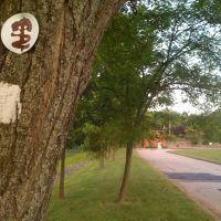 PP in Cedar Knolls, Хановер