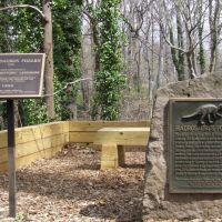 Hadrosaurus foulkii  Haddonfield, Черри-Хилл