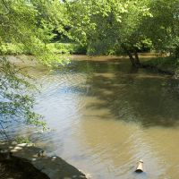 Stream At Cooper River, Черри-Хилл