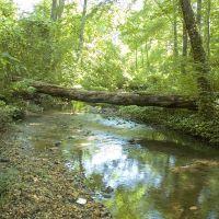 Stream Above Cooper River, Черри-Хилл