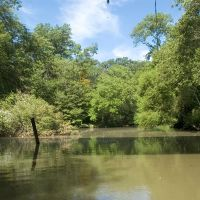 Cooper River Near RR Bridge, Черри-Хилл