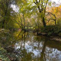 Cooper River at Cooper River Park, Fall, Черри-Хилл