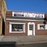 Chestnut Lawn Mower & Equipment Inc, Юнион