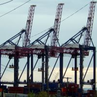 Container Cranes, Арлингтон