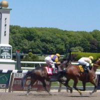 Belmont Park Race Track, Беллероз