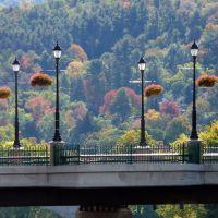 copyrighted__  Memorial Bridge Riverside Dr., Бингамтон