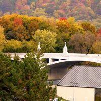 Clinton Street Bridge in Autumn, Бингамтон