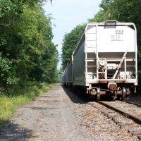 "End of DL&W Trackage Vestal "" spur"" 9/2011, Вестал"