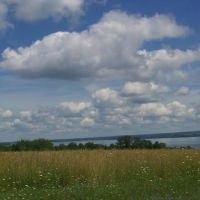 West side of Cayuga, Виллард