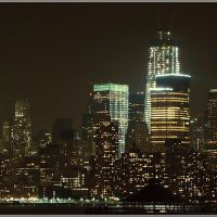 Manhattan - The Urban Jungle (* by Ahmet Bekir), Виола