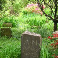 Moore Jackson Cemetery, Вудсайд