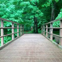 Sawyer Park bridge, Грис