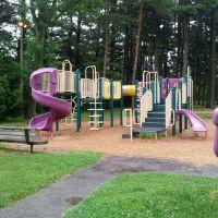 Sawyer Park large playground, Грис