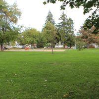 Columbus Park playground, Грис