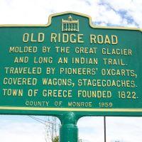 OLD RIDGE ROAD, Грис