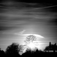 Black & White, Грэйт-Нек-Эстейтс
