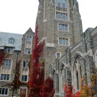 Cornell University at Ithaca, NY, Итака