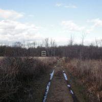 Trail through the Ramshorn wetland, Катскилл