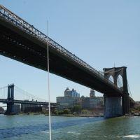 il ponte di brooklin, Квинс