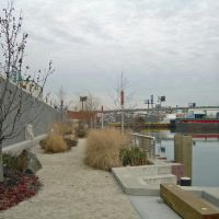 Newtown Creek Nature Trail, Квинс