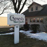 Genesis Hair Studio Albany NY, Колони